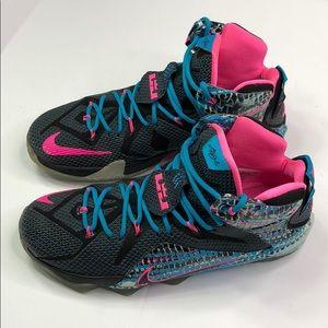 b763790442a ... closeout nike shoes lebron 12 23 chromosomes 59efa 63222